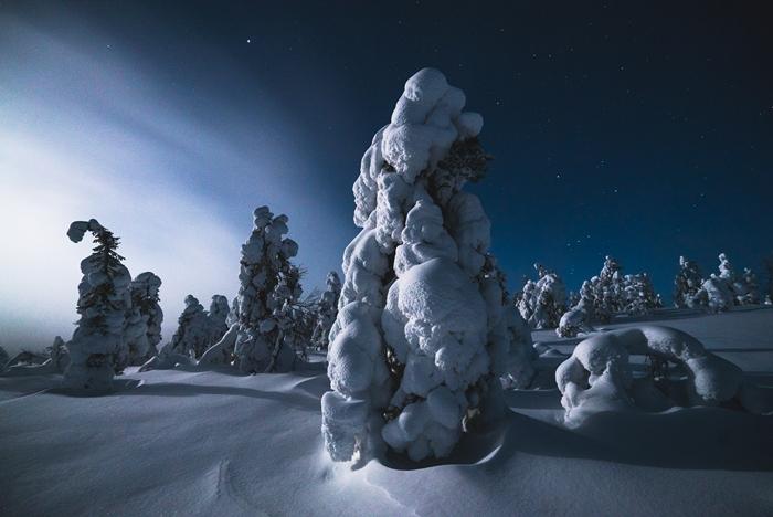 laponia noche nieve vcth