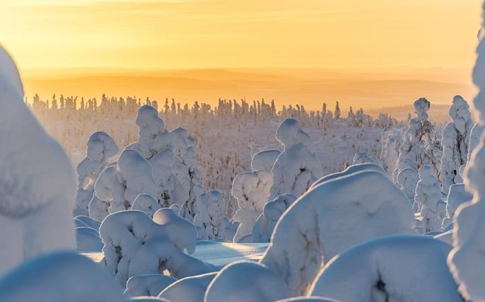 paisaje nevado sol laponia
