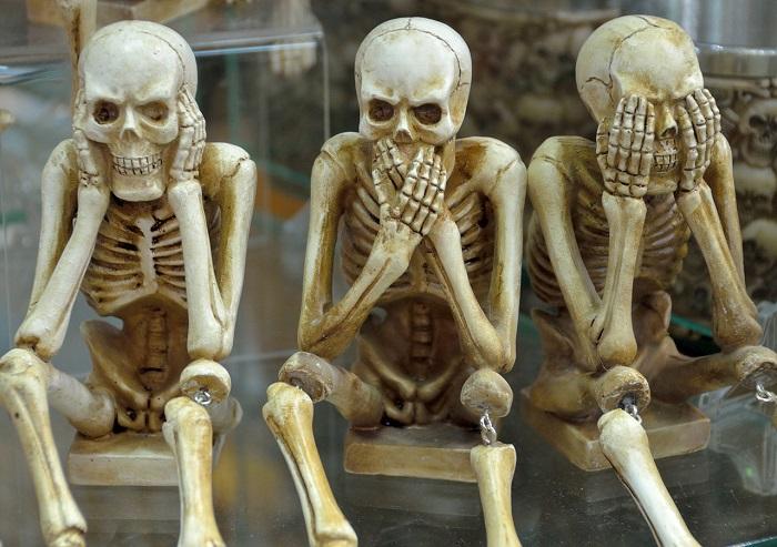 esqueletos-gaditanos